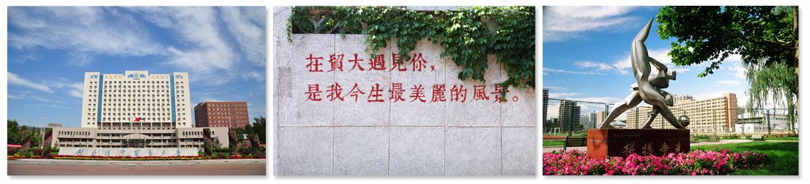 对外经济贸易大学深圳研究院